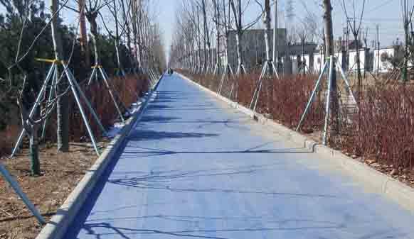 彩色沥青路面为何如此美丽,一篇资讯为你解答!